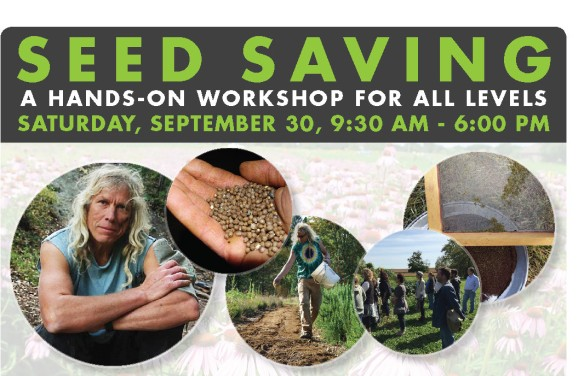 seed-saving_workshop_sep_30_2017 crop